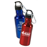 Aluminum Bottle 20 oz. BPA Free
